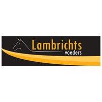 logo-lambrichts.jpg